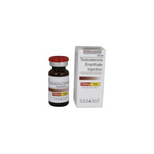 Testosterone-Enanthate-500